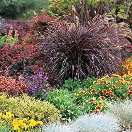Wonderful Evergreen Grasses Landscaping Ideas 12