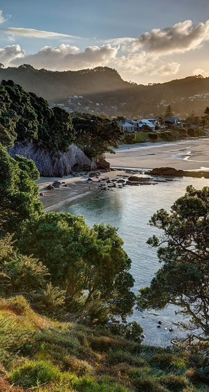 Late afternoon Winter sun drapes the landscape at Hahei Beach in New Zealand. Beautiful.