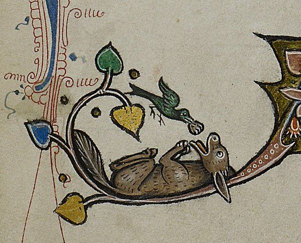 23 Best Images About Medieval Livestock On Pinterest A
