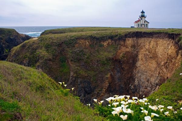 Lighthouse Mendocino California Fine Art Prints and Posters for Sale:  Drop-Off, California Girls, California Fine, Favorite Places, Cabrillo Lighthouses, Mendocino Coast, California Coast, Mendocino California, Lighthouses Mendocino