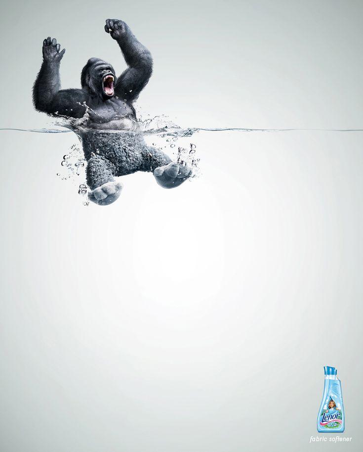 Gorilla in water
