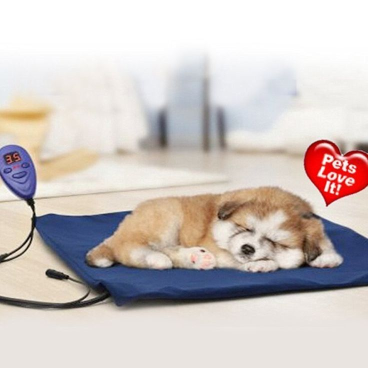 Pet Heating Bed ONEVER Electric Heating Pad for Dogs Cats Warming Dog Beds Pet Mat with Chew Resistant Cord Soft Removable Cover ** For more information, visit image link. (This is an affiliate link and I receive a commission for the sales)