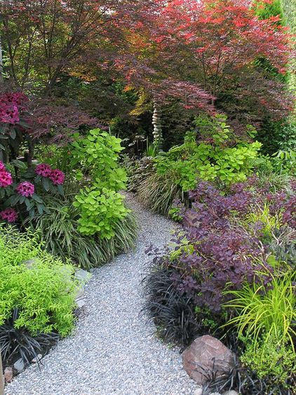 shades of purple provided by 'Beni Otake' Japanese maple (Acer palmatum 'Beni Otake') and 'Velvet Cloak' smokebush (Cotinus coggygria 'Velvet Cloak'). The chartreuse foliage of 'Mellow Yellow' spirea (Spiraea thunbergii 'Ogon'), 'Golden Spirit' smokebush (Cotinus coggygria 'Golden Spirit') and Bowles' golden sedge (Carex elata 'Aurea') adds high contrast, taking center stage.