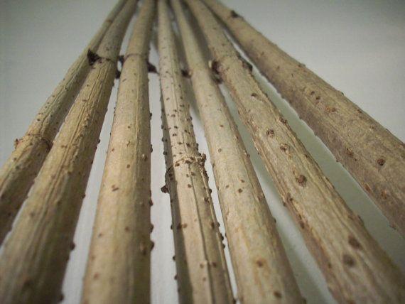 Elder Stick,Elder Wand,Elder Branch,Straight Long Elder Stick,Craft Supply,Home Decor,Set of 7