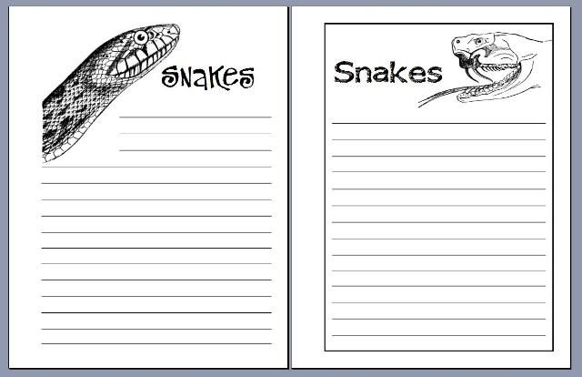 snakes notebooking pagesHomeschool 2013, Grade Science, Beans Schools, Homeschool Coops, Notebooking Journe Udeas, Homeschool Science, Notebooks, 2Nd Grade, Homeschool Nature Journals
