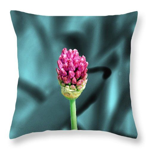 """Simply Beautiful Throw Pillow for Sale by Aimee L Maher Photography and Art Visit ALMGallerydotcom. Our throw pillows are made from 100% spun polyester poplin fabric and add a stylish statement to any room. Pillows are available in sizes from 14""""x14"""" up to 26""""x26"""". Each pillow is printed on both sides (same image) and includes a concealed zipper and removable insert (if selected) for easy cleaning. Ships within 2-3 business days"""