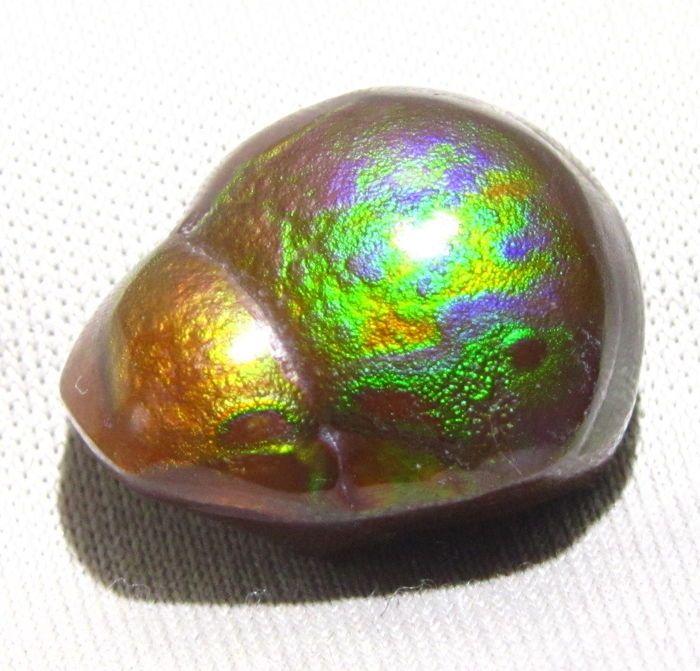 Bonte deel-gepolijst Mexicaanse Fire Agate - 205 x 15.1 x 580 mm - 177 gm  Gedeeltelijk gepolijst ruwe Mexicaanse Vuur Agaat. Deze zeldzame edelsteen heeft zeer helder groen paars en oranje metallic brand. Paars is een van de zeldzaamste kleuren in Vuur Agaat. Vanuit bepaalde hoeken en met wat fantasie lijkt op een kever. Let op: de edelsteen lijkt op de foto's in heldere direct zonlicht of overdekt spotlight.Vuur Agaat allerlei Chalcedoon is een edelsteen gevonden alleen in bepaalde…