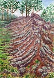 Vesuvius - lava pahoehoe and lichene Stereocaulon Vesuvianum. Watercolor by Jana Haasová