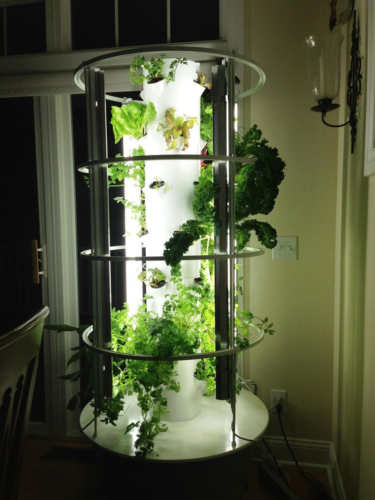 17 best ideas about Vertical Garden Systems on Pinterest