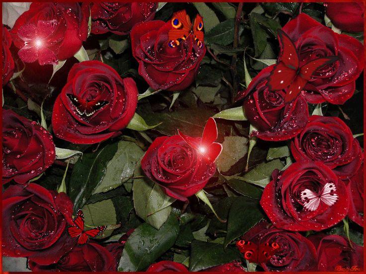 Hareketli kalpli çiçekler işıltılı çiçekler en güzel işıl