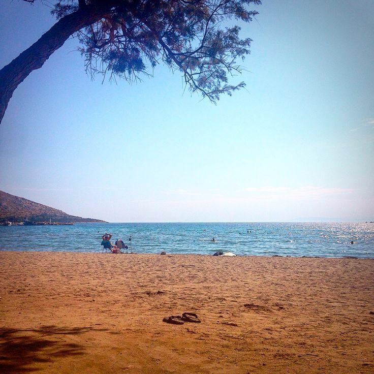 My summer!