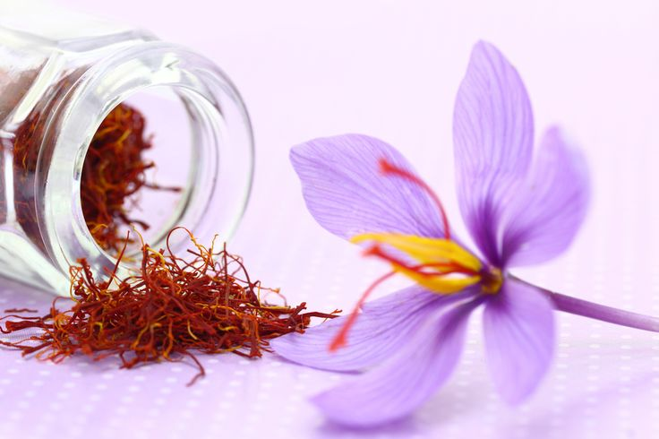 Medzi prvé jarné kvietky, ktoré môžu zdobiť vašu záhradu či balkón, patria rôznofarebné krókusy.  Zámena so šafranom siatym by vás však mohla vyjsť draho!