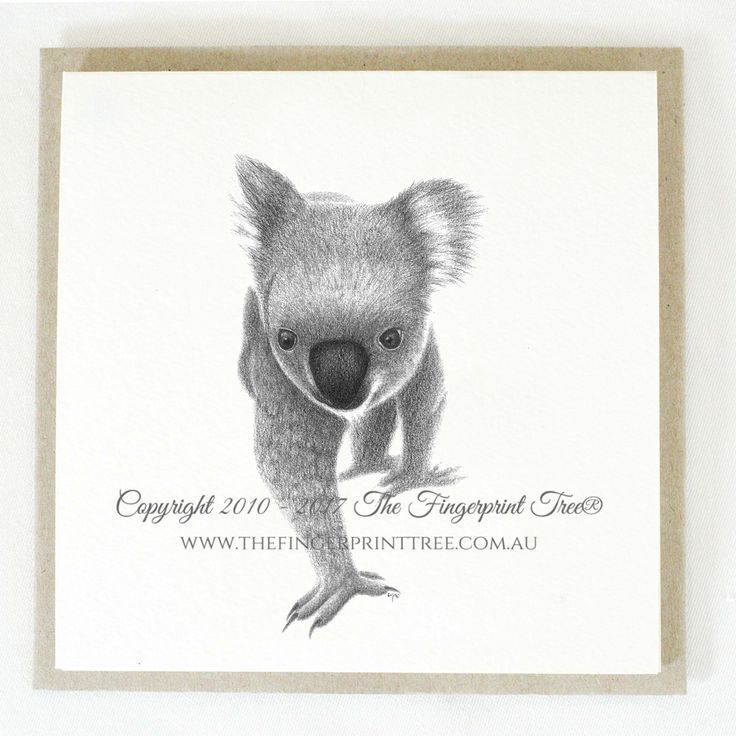 Gift card - Koala:  Cards! by The Fingerprint Tree® is our couture range of gift cards featuring illustrations by Ray Carter, Chief Artist & Founder.  Made-to-order and Giclée printed at our Southern Highlands studio.   We sell direct to the public and to retailers.