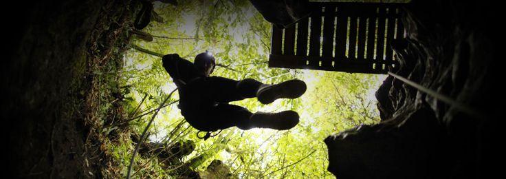 Waitomo New Zealand - Waitomo Caves, Glow Worms, Black Water Rafting, Tourist Attractions NZ