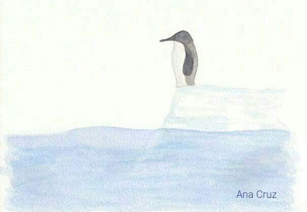 Pingüino #dibujo #acuarela