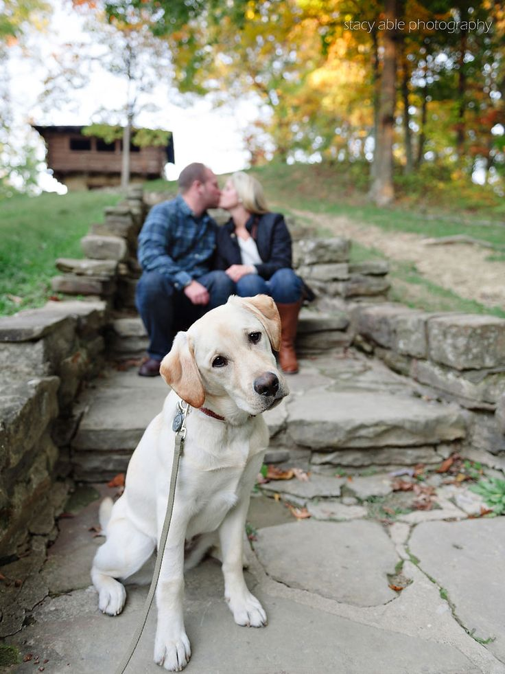 Stacy Able Photography www.stacyable.com #midwest #wedding photography Engagement session with dog