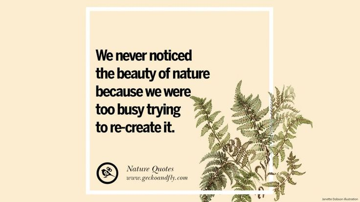 Best 25 Too Busy Quotes Ideas On Pinterest: Best 25+ Mother Nature Quotes Ideas On Pinterest