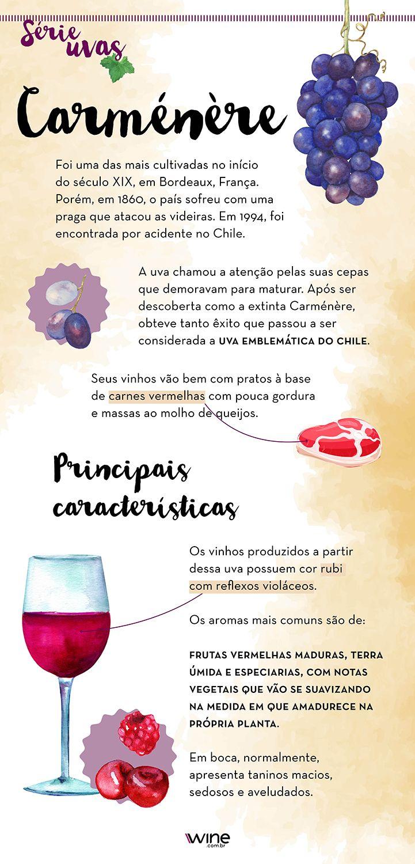Conheça mais sobre a uva carménère, que produz ótimos vinhos tintos. #wine #vinho #vinhotinto #uva