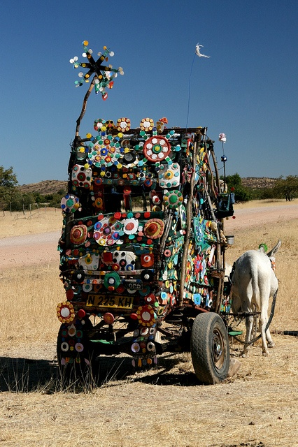 Seen in Damaraland, Namibia. BelAfrique  -  your personal travel planner…