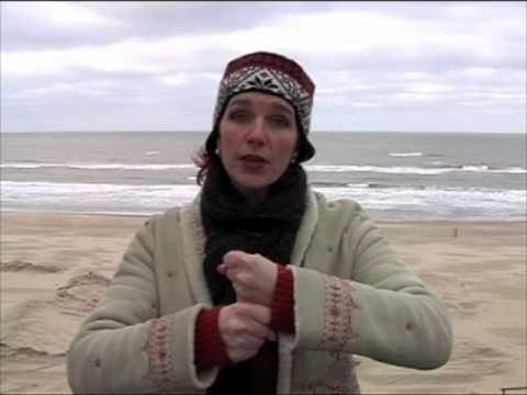 Dierengebaren en vele andere gebaren - YouTube
