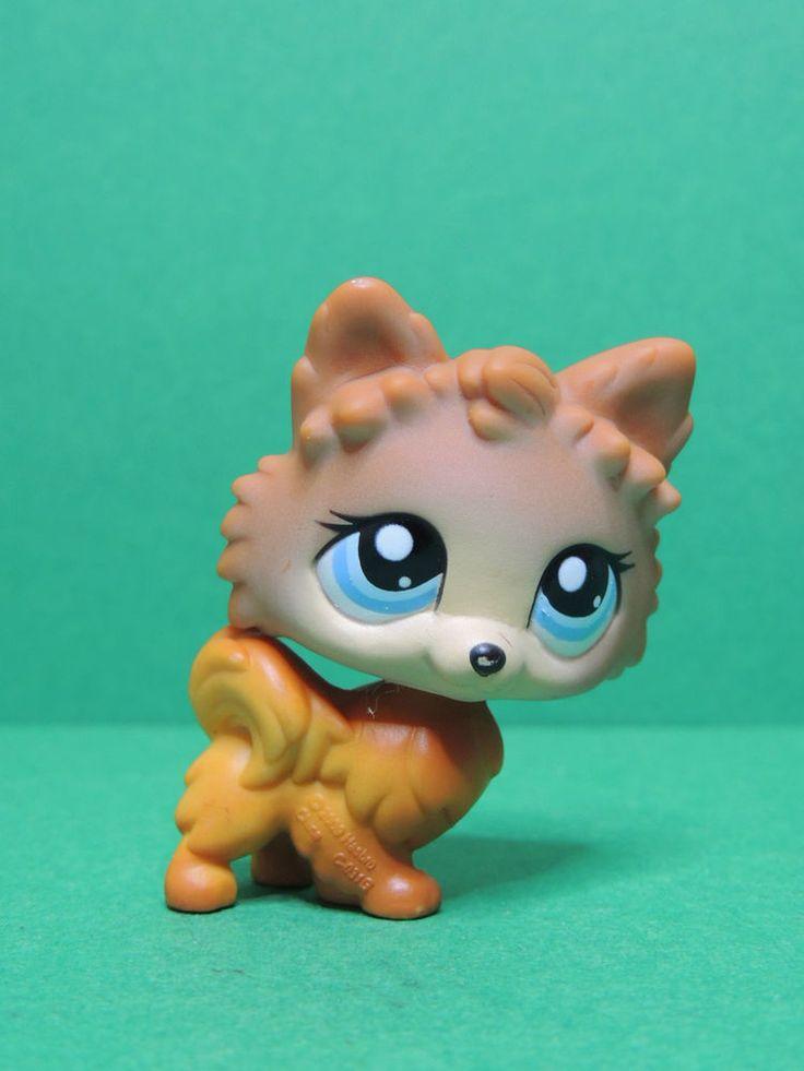 #1599 chien dog pomeranian brown & blue eyes LPS Littlest Pet Shop Figurine