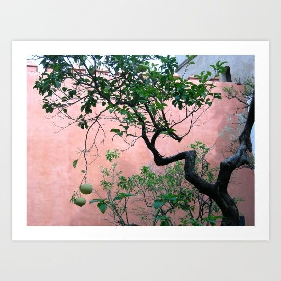 Collect your choice of gallery quality Giclée, or fine art prints custom trimmed by hand in a variety of sizes with a white border for framing. https://society6.com/product/spanish-garden_print?curator=wellglow