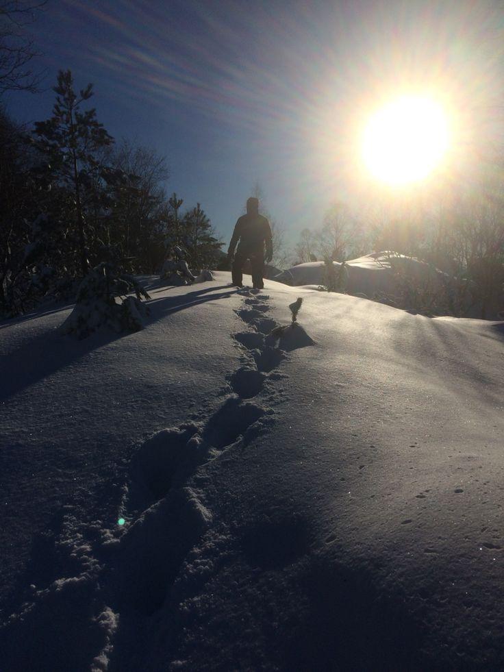 Winterwonderland - Bergen, Norway