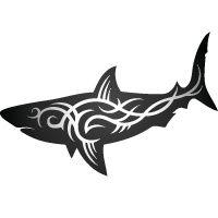 shark tattoos - tribal.  Not a huge fan of tribal, but like the profile.