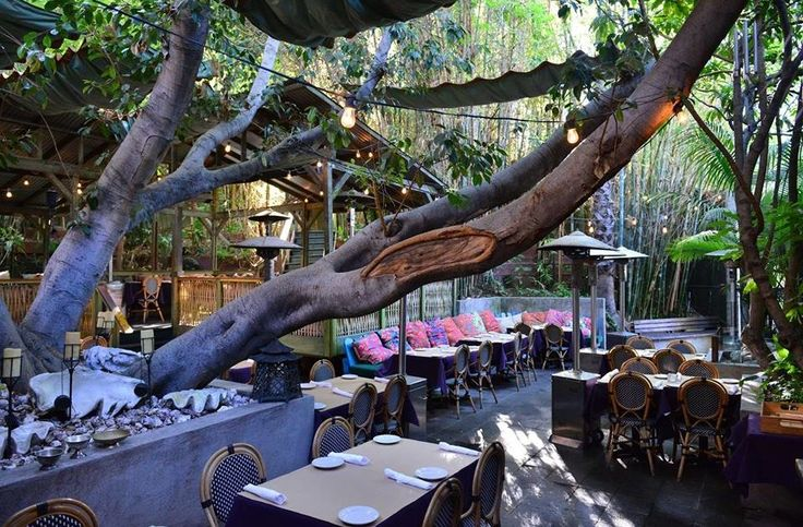 Cliff's Edge is a Silver Lake hotspot, with towering wood doors, a tree-lined patio, and a simple seasonal menu filled with New American and Mediterranean eats- plus a killer brunch. The interior...