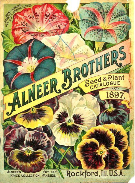 garden seed catalogs. vintage seed catalog garden catalogs