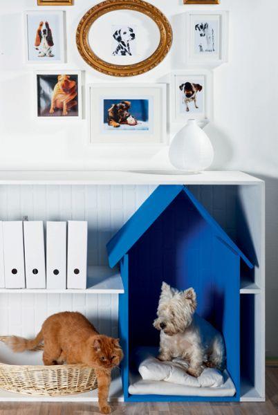Pet's house/bookshelf