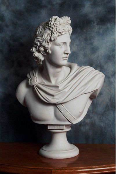 APOLLO BELVEDERE A marble bust after the by PrimaDimoraSculpture