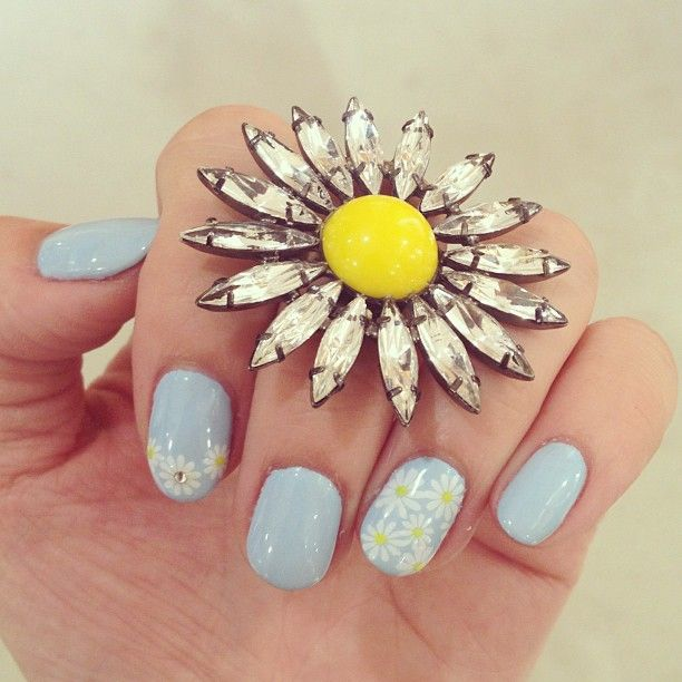 pastel blue and daisies