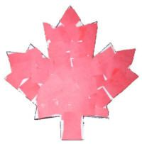 Scissor Skills maple leaf craft