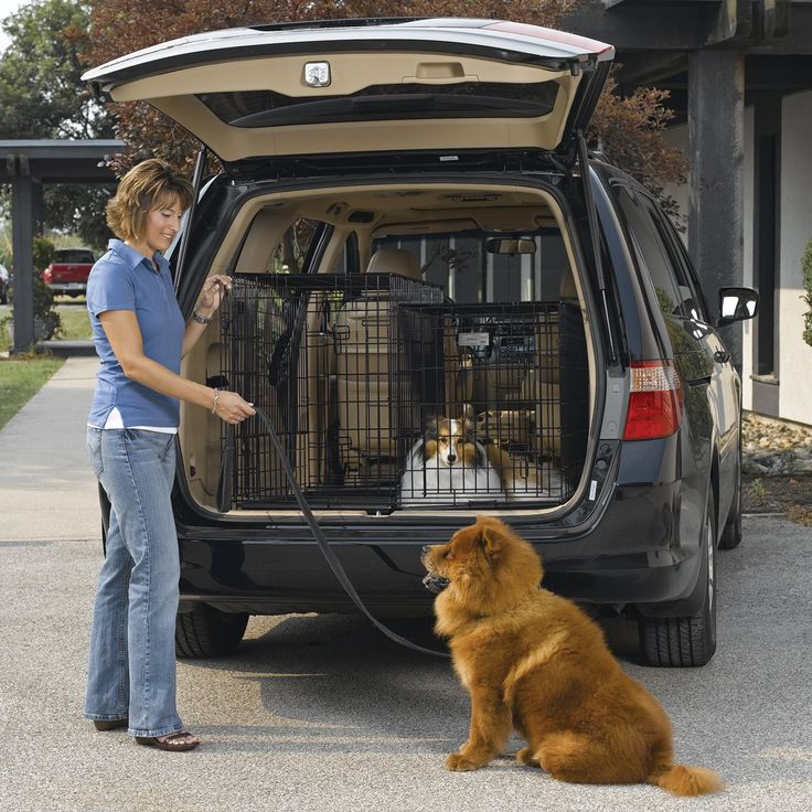 Midwest Solution Series Side By Side Double Door Suv Dog