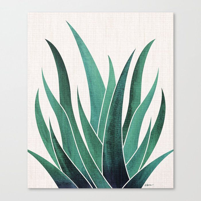 Desert Agave Canvas Print By Moderntropical Large Succulent Art Modern Tropical Art Prints