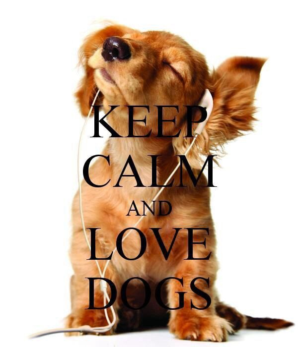 Regardless of whether you're tired of the Keep Calm signs or not, this is cute!