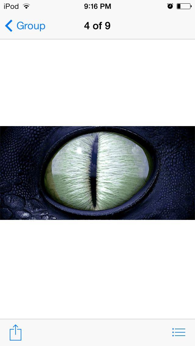 Dat eye doe