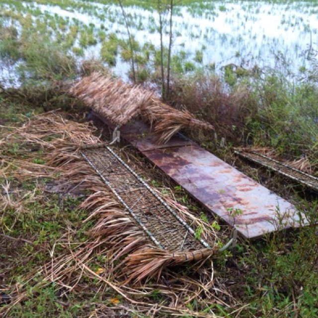 Coonass Duck Blind Construction The Great Outdoors