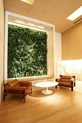 Jardim Vertical e Madeiras: Gardens Vertical, Jardines Verticales, Jardim Vertical, Green, Paredes Verdes, Jardine Verticai, Casa Golf Los, Parede Verde, Decor Verdes