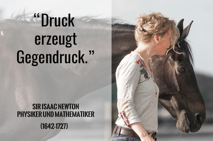 """Warum Druck Gegendruck erzeugt: """"Pferde und Menschen unterscheiden sich in ihrer Art auf Unvorhergesehenes zu reagieren. Daraus resultieren viele Konflikte zwischen Mensch und Pferd"""" (Zitat Herdis Hiller)"""