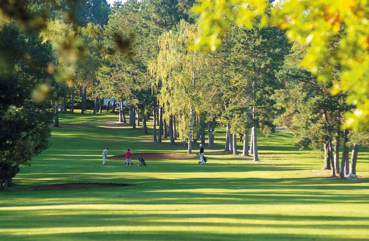 Pensez à amener vos clubs ! 3 golfs autour du gîte ! www.gite-bourgogne.net