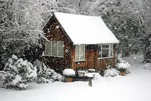 A Cabin in the Snow