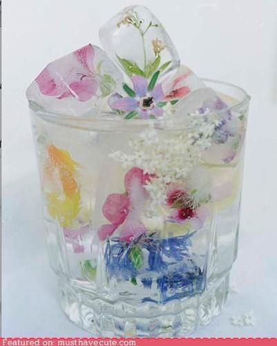 I want a drink with floral ice cubes, NOW. ^_^ #ice