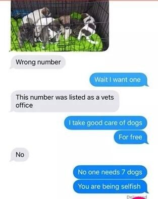 This wrong number, who definitely should share some of their puppies. | 19 Of The Funniest Wrong Number Texts Ever Sent