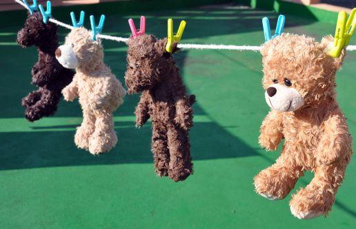 Teddy bear laundry