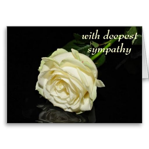 with deepest sympathy cream rose card