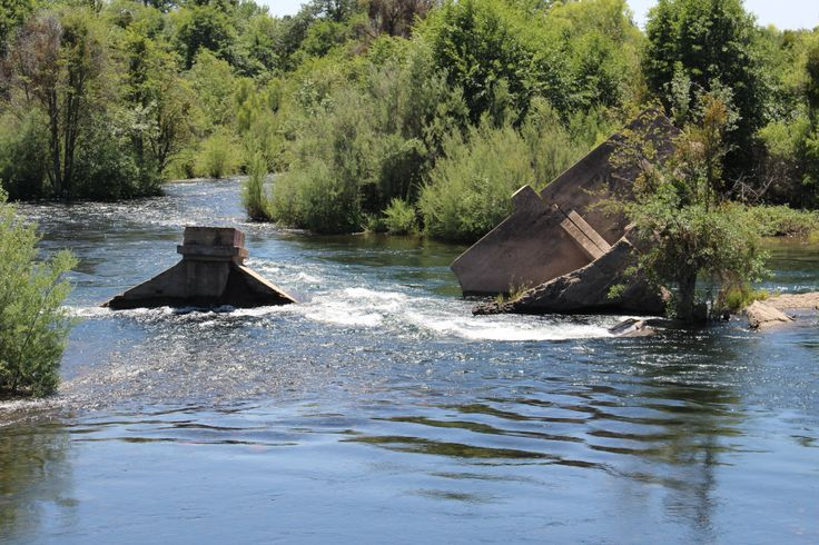 81 best images about my old stomping ground on pinterest for San joaquin river fishing