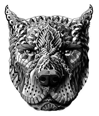 Kleurplaat Fox Bioworkz Google Search Zentangle Art Pitbulls Art