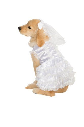 Doggie Winter Wedding Dress Up Clothes